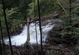 Beautiful waterfall i saw on my hike friday.